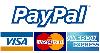 Pague en línea con paypal